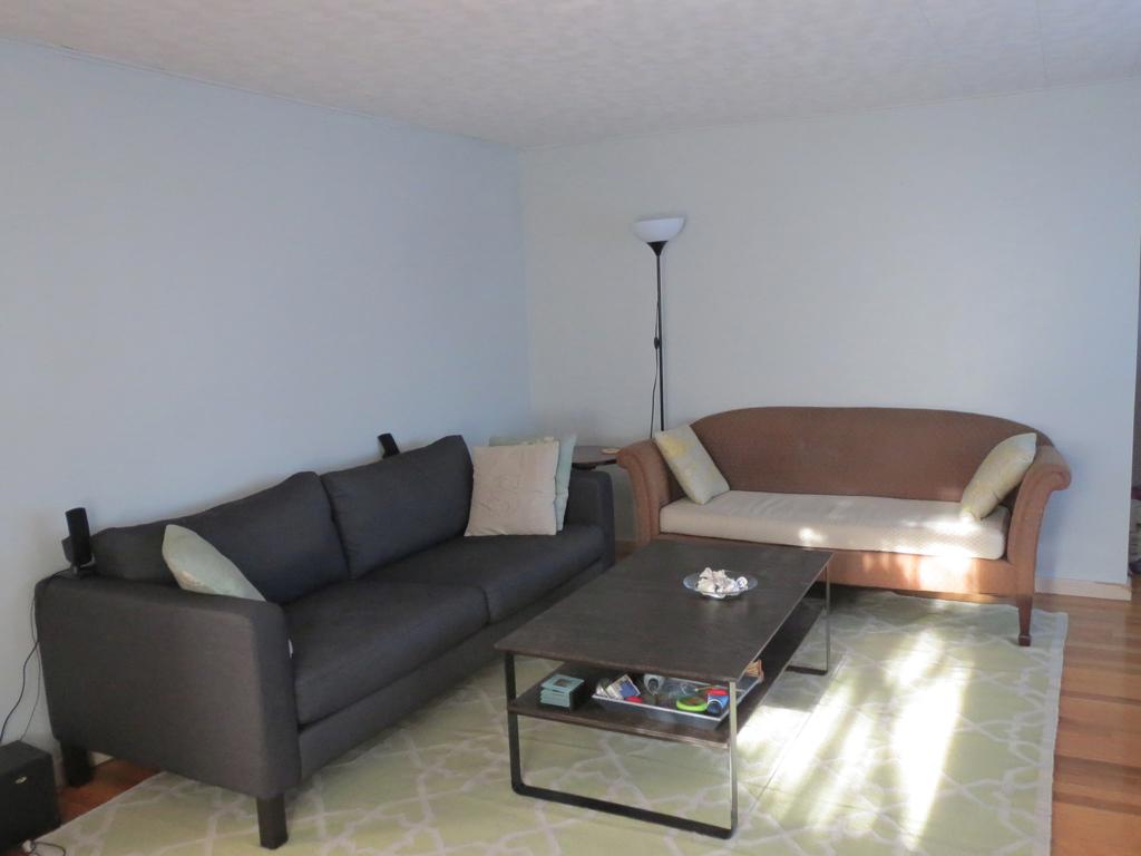 Living room progress -- Plaster & Disaster