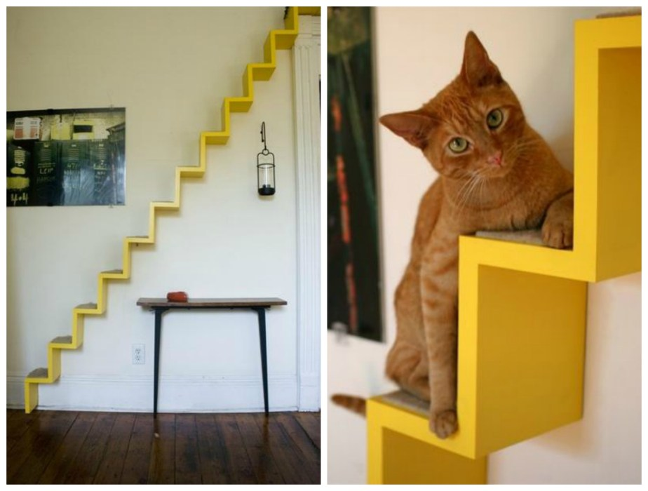 Cat stairs -- Plaster & Disaster