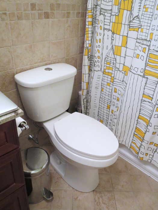 How (not) to install a toilet – Plaster & Disaster