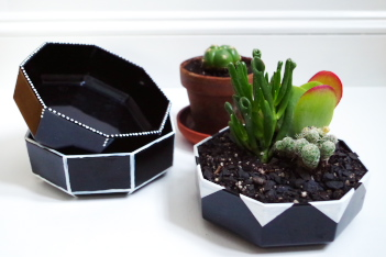 Thrift Store Bowls into Graphic Planters - Plaster & Disaster
