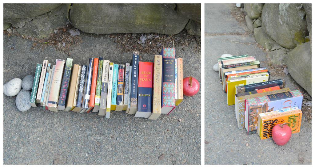 Salvaged books -- Plaster & Disaster