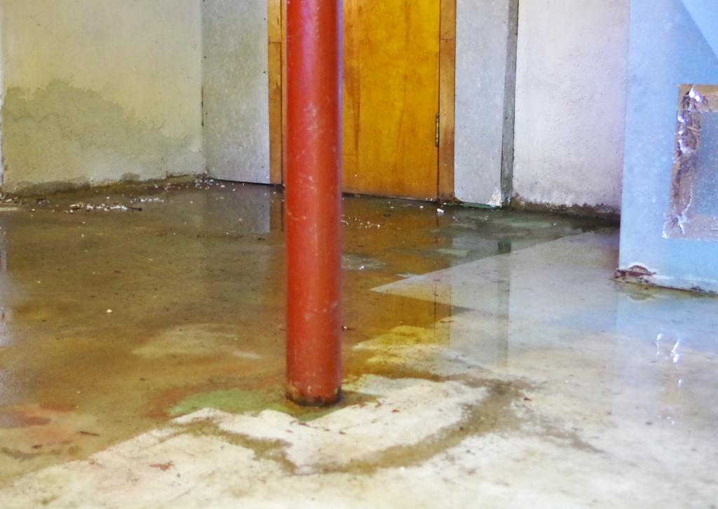 Basement Flood 2 - Plaster & Disaster