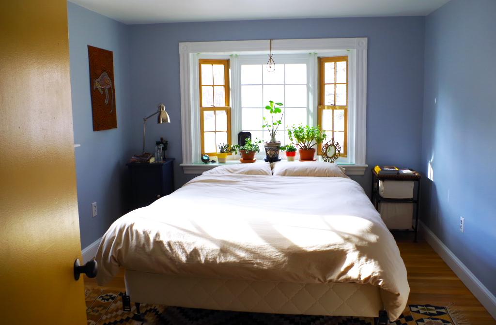 Master Bedroom - Plaster & Disaster