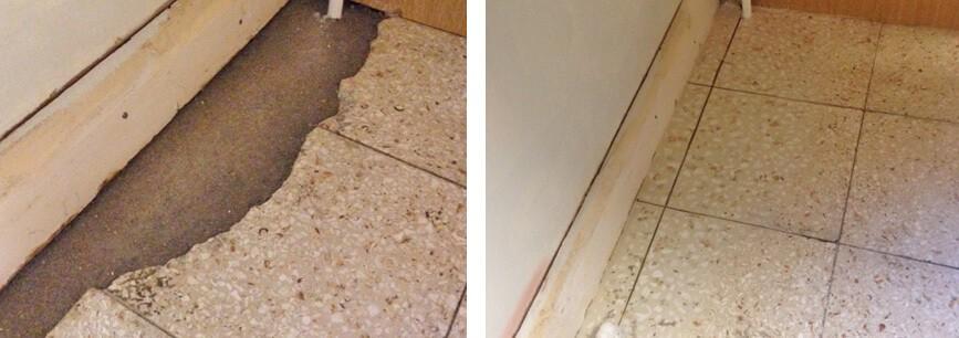 chipped tile repair plastic surgeon