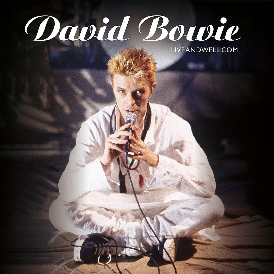 BowieNet organizó eventos en línea en vivo; asimismo, fue la primera web en tener exposiciones de arte incluso antes de llegar a los museos
