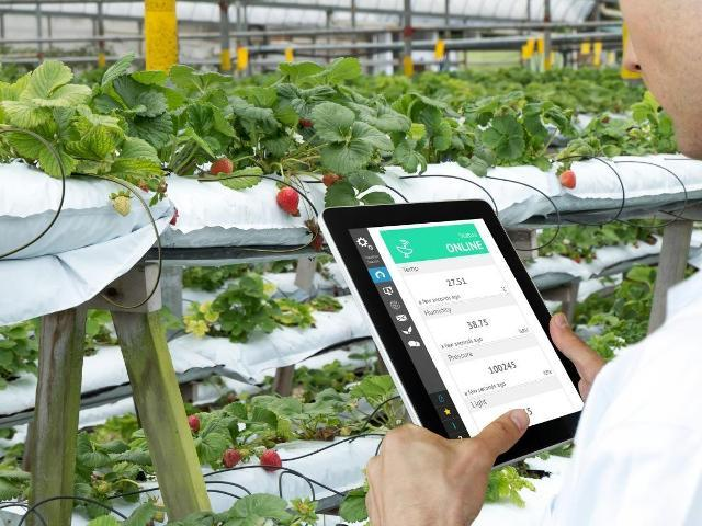 Smart technology helping farmers