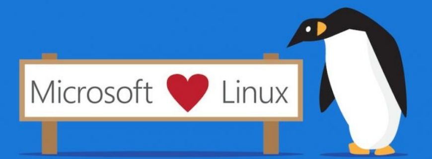 Microsoft and Linux