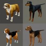 PS_Concept_Pets (4)
