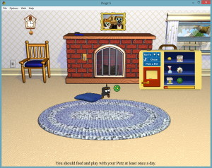 Playing ball with a virtual pet in the living room.