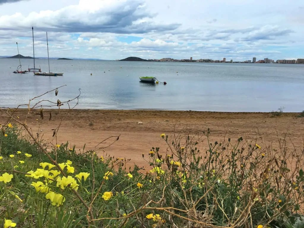 Mar Menor and flowers in Playa Honda