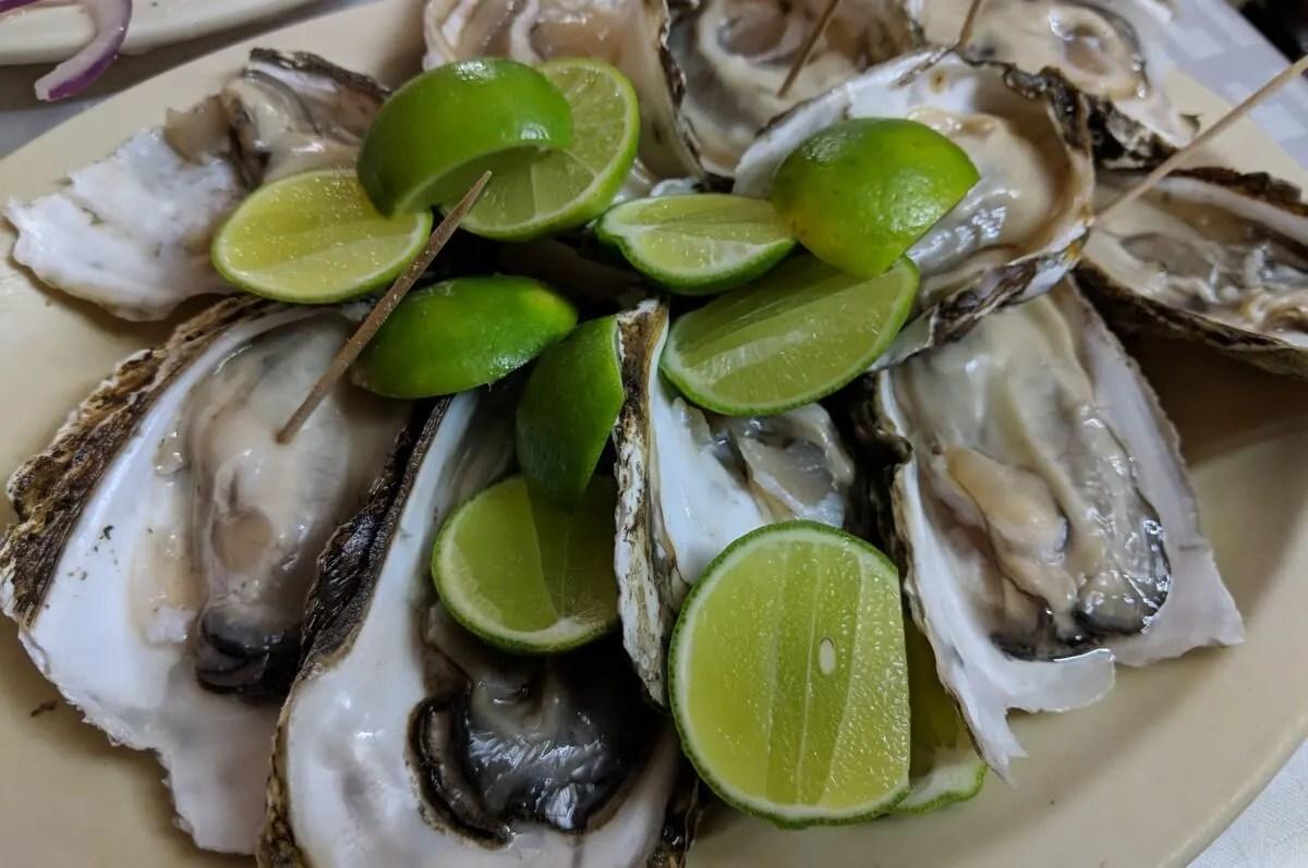 Oysters at Cuchupetas