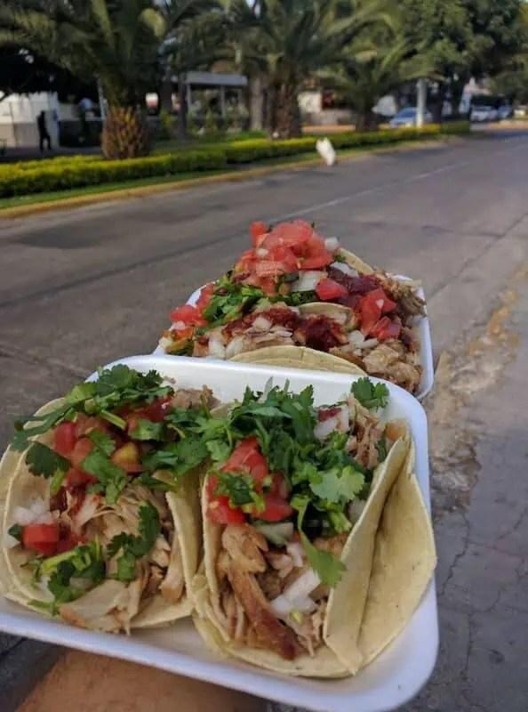 Carnitas tacos in Chapalita