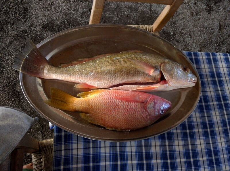 Whole fish for grilling