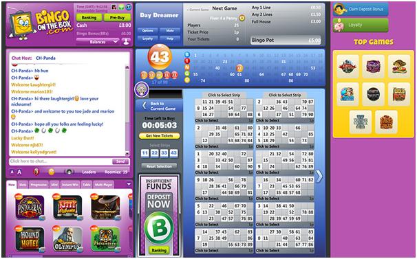 Bingo Chat Games