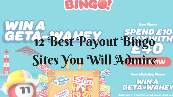 12 Best Payout Bingo Sites you will admire