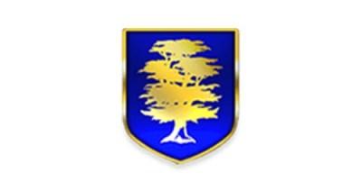 Bearwood Primary School