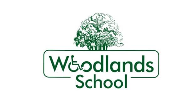 Woodlands School, playground installers, Playcubed