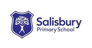 Salisbury Primary School, Bespoke School Playground Customer of Playcubed
