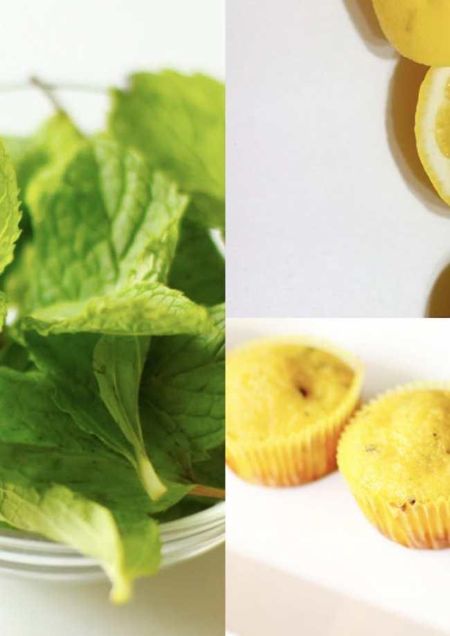 Lemon Mint Cupcakes 3