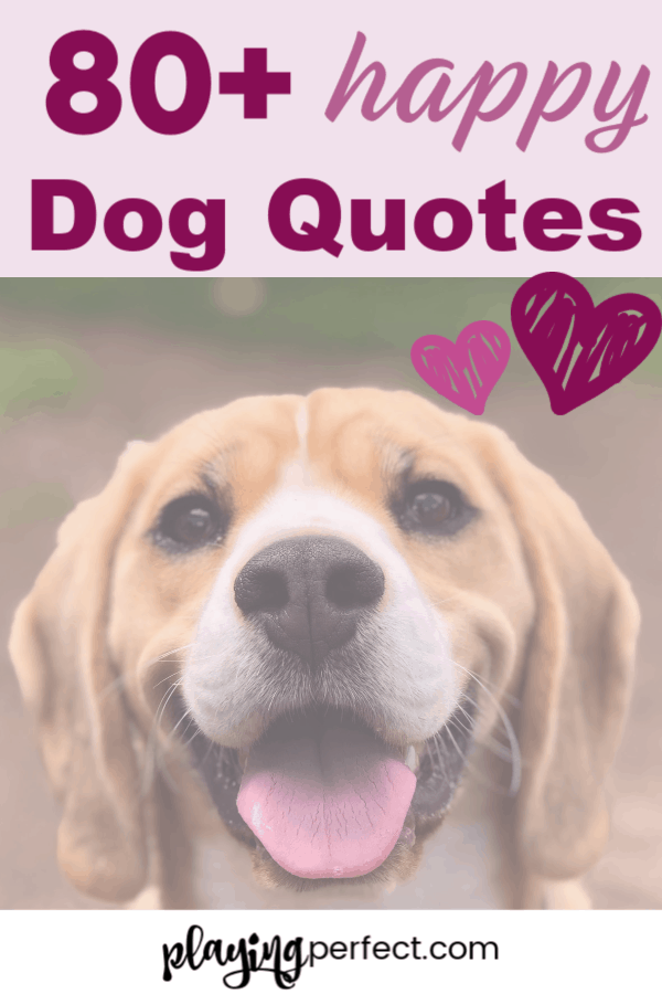 84 Quotes About Dogs That Will Make You Happy You're A Dog