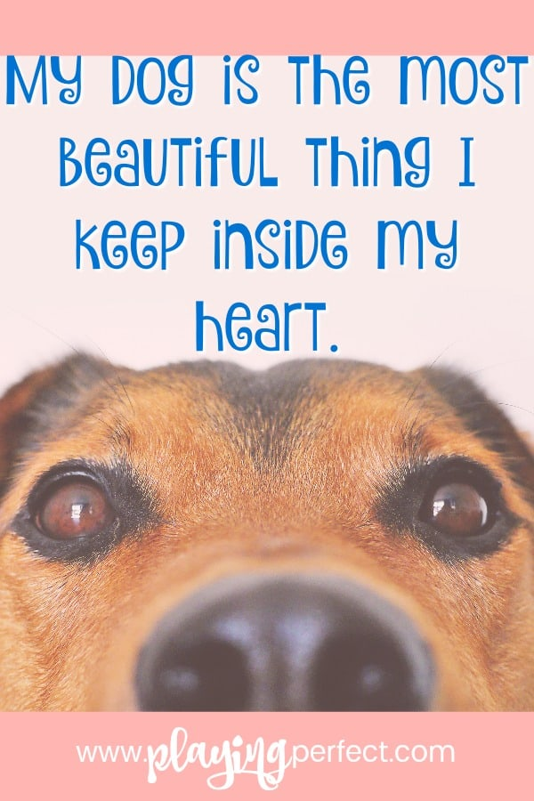 Dog Love Quotes Beauteous 48 Quotes About Dogs That Will Make You Happy You're A Dog Mom