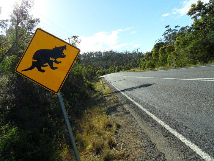 roadsign-australie-whv-4 ©Romain Dondelinger - PlayingTheWorld