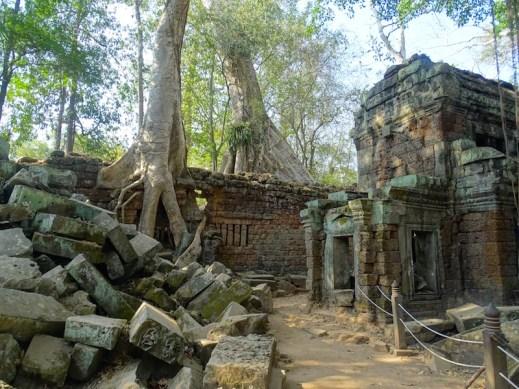 ©playingtheworld-temples-angkor-taprohm-cambodge-voyage-14