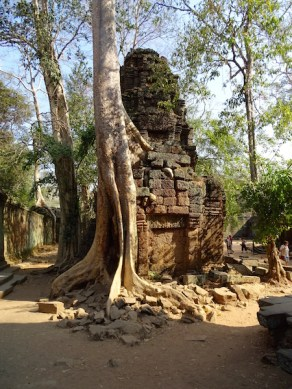 ©playingtheworld-temples-angkor-taprohm-cambodge-voyage-15