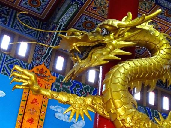 Et le dragon jaune...