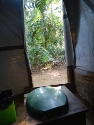 Toilettes avec vue sur la forêt !