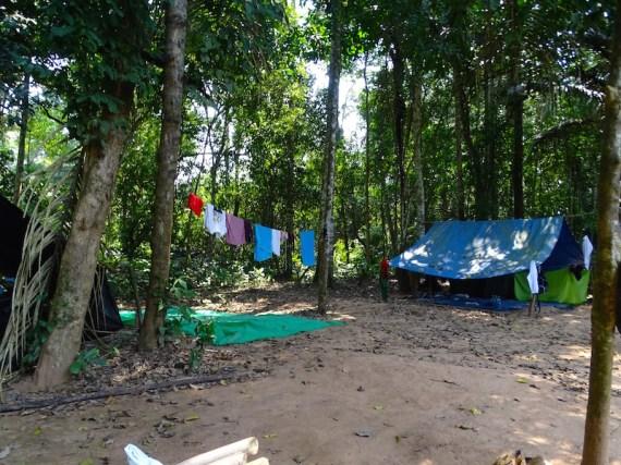 playingtheworld-bolivie-foret-amazonie-selva-rurrenabaque-voyage-36