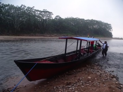 playingtheworld-bolivie-foret-amazonie-selva-rurrenabaque-voyage-72