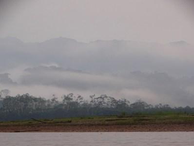 playingtheworld-bolivie-foret-amazonie-selva-rurrenabaque-voyage-76
