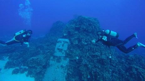 Plongée île de pâques