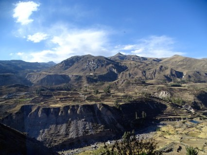 playingtheworld-perou-canyon-colca-voyage-2