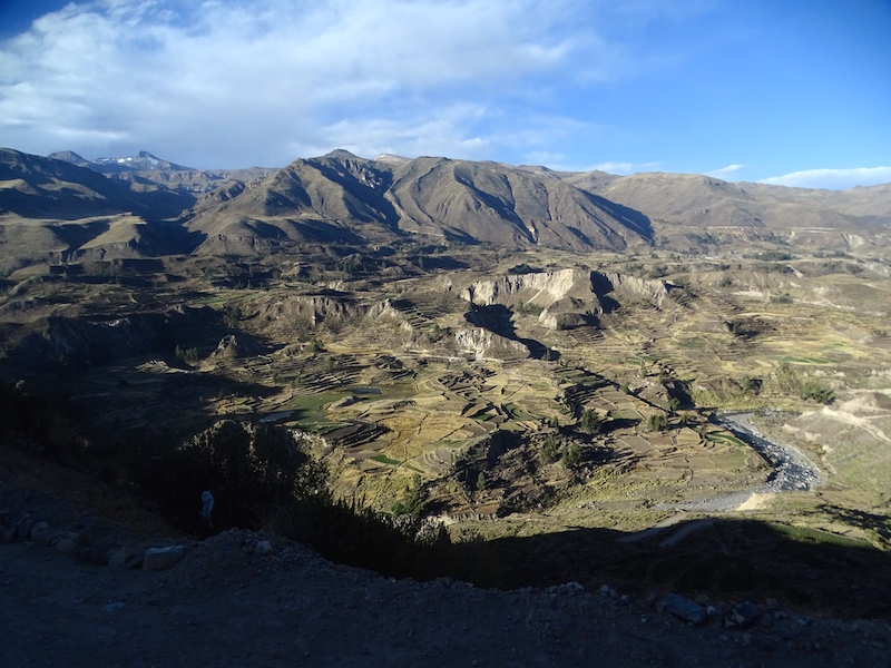 playingtheworld-perou-canyon-colca-voyage-3