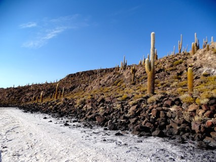 ©playingtheworld-bolivie-salar-uyuni-voyage-19