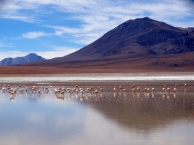 ©playingtheworld-bolivie-salar-uyuni-voyage-64