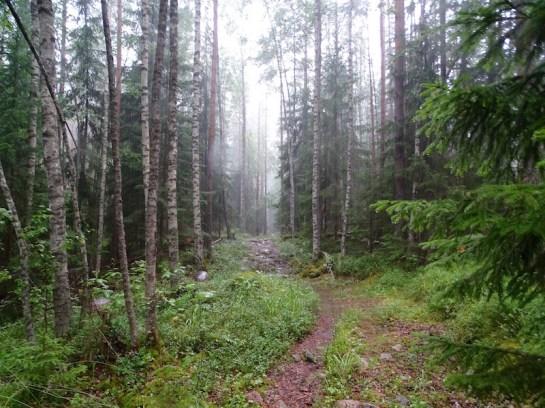 ©playingtheworld-finlande-lacs-mokki-voyage-71