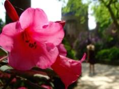 ©playingtheworld-week-end-bretagne-broceliande-josselin-chateau-12
