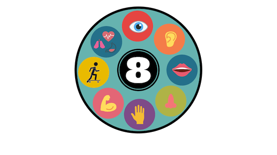 The 8 Sensory Systems