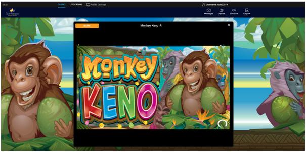 Monkey keno online game