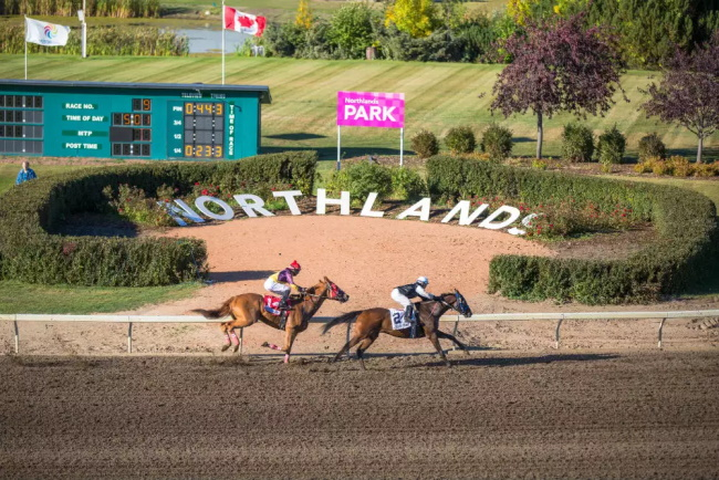 Northlands-Park-Horse-Racing-Casino