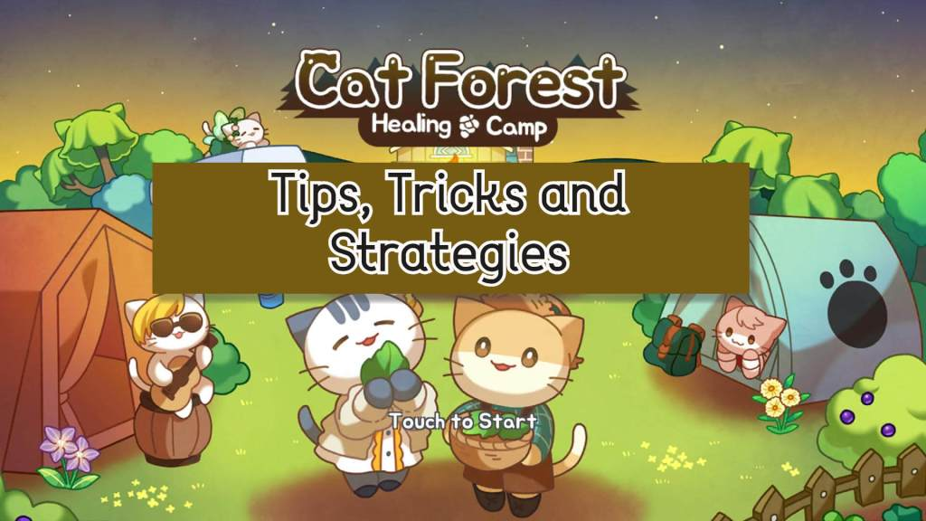 Cat Forest Healing Camp