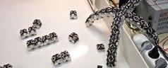 Swarm Robotics PPT