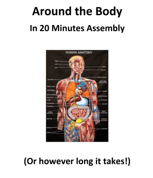 Around the Body in 20 Minutes Assembly