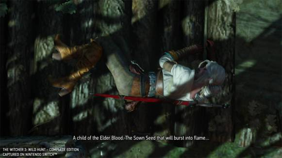 thewitcher3wildhunt_gc19switchimages_0006