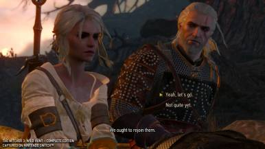 thewitcher3wildhunt_gc19switchimages_0023
