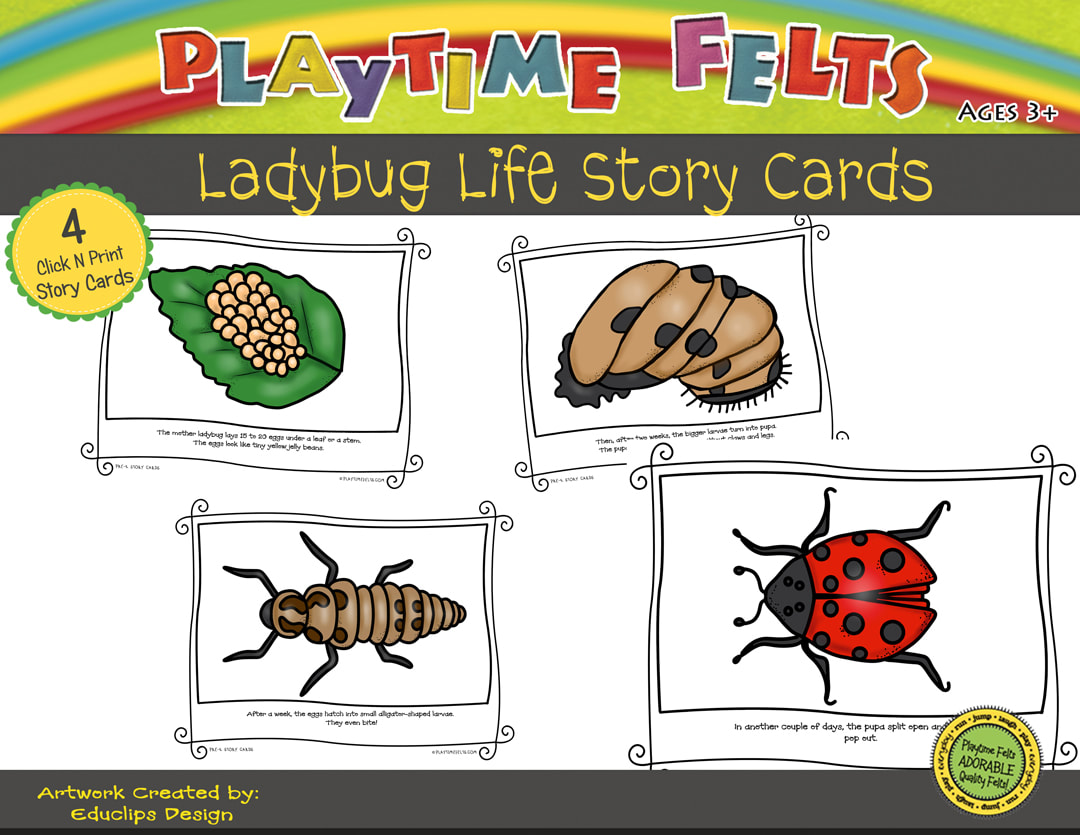 Ladybug Life Cycle Printable Story Cards Digi Download