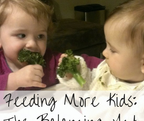 Feeding More Kids The Balancing Act by Play with Food